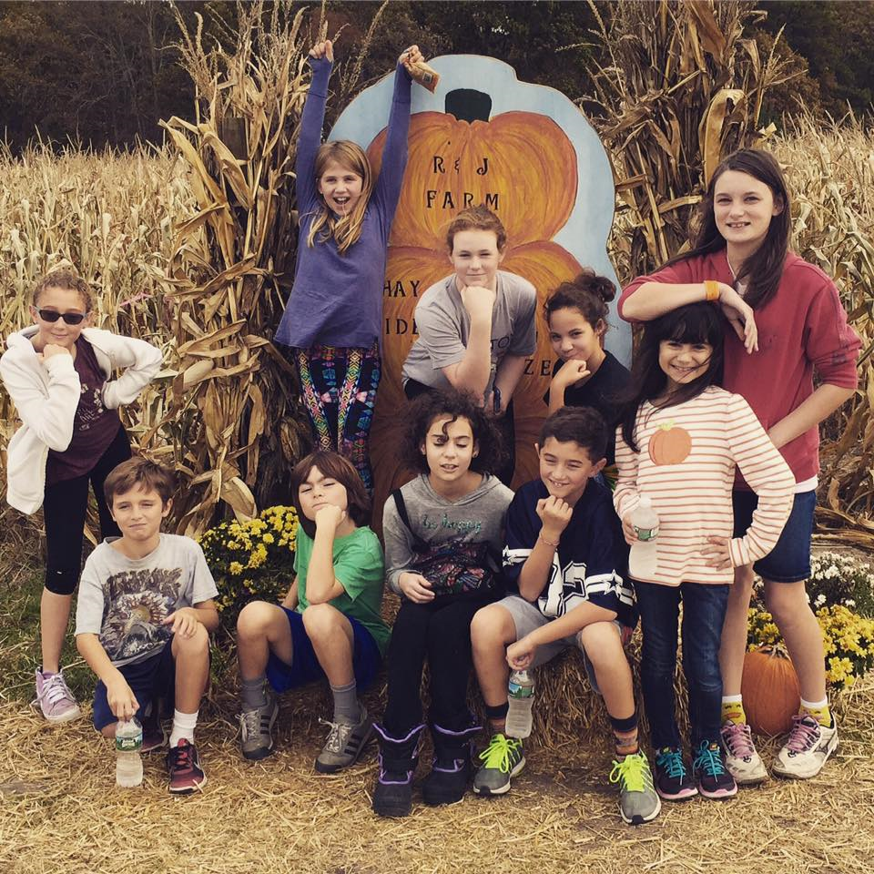 cbi-corn-maze-photo